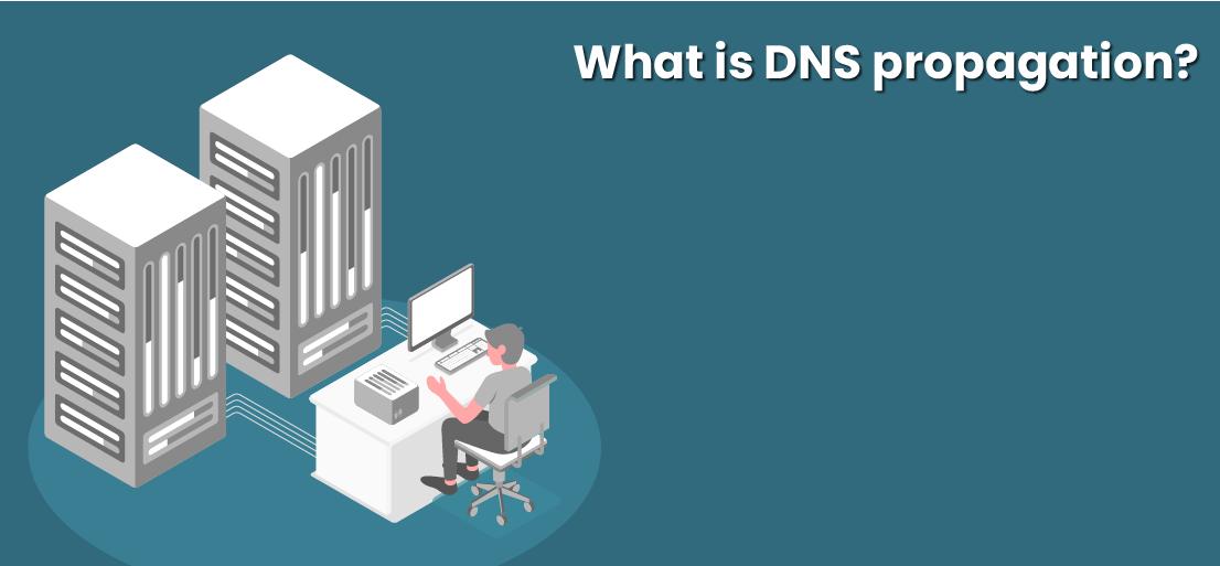 DNS propagation time